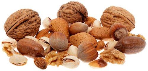 tree nuts 101