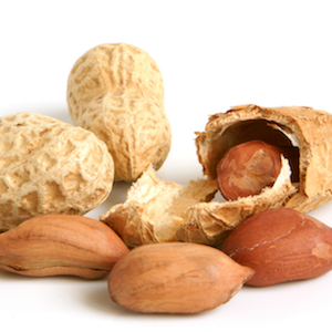 what is a peanut allergy
