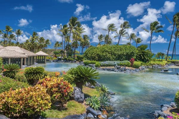 kauai.png