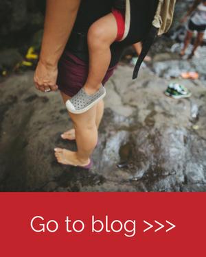 GoToBlog.png