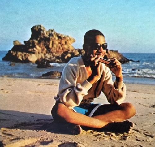 Stevie Wonder at the beach
