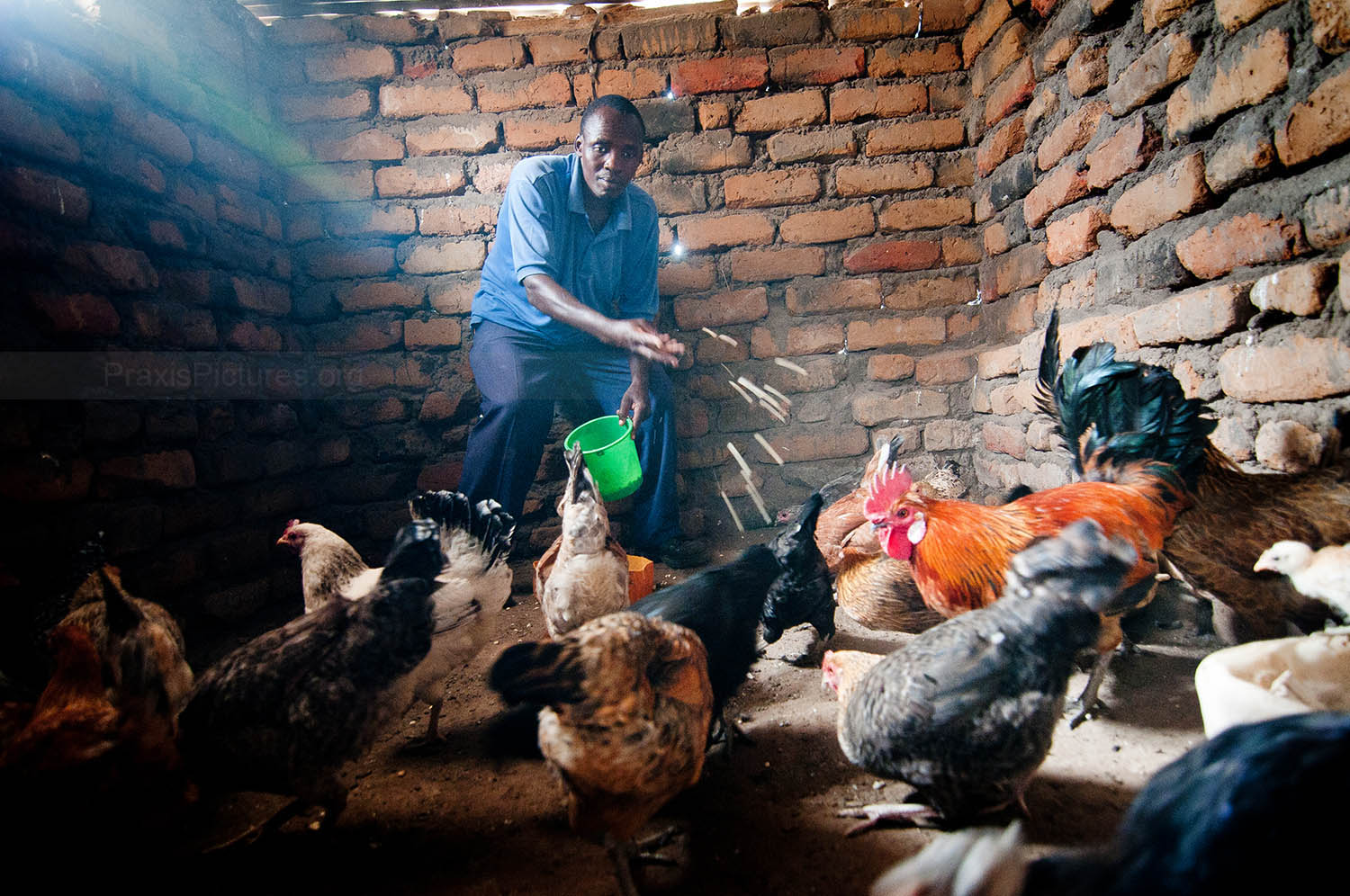 OMAR - Omar is a member of the Tumaini VICOBA group made up mostly of people living with HIV. The group decided to start a jointly owned poultry farm, allowing them to share the responsibilities and benefits. The group has already made a profit and plans to expand.