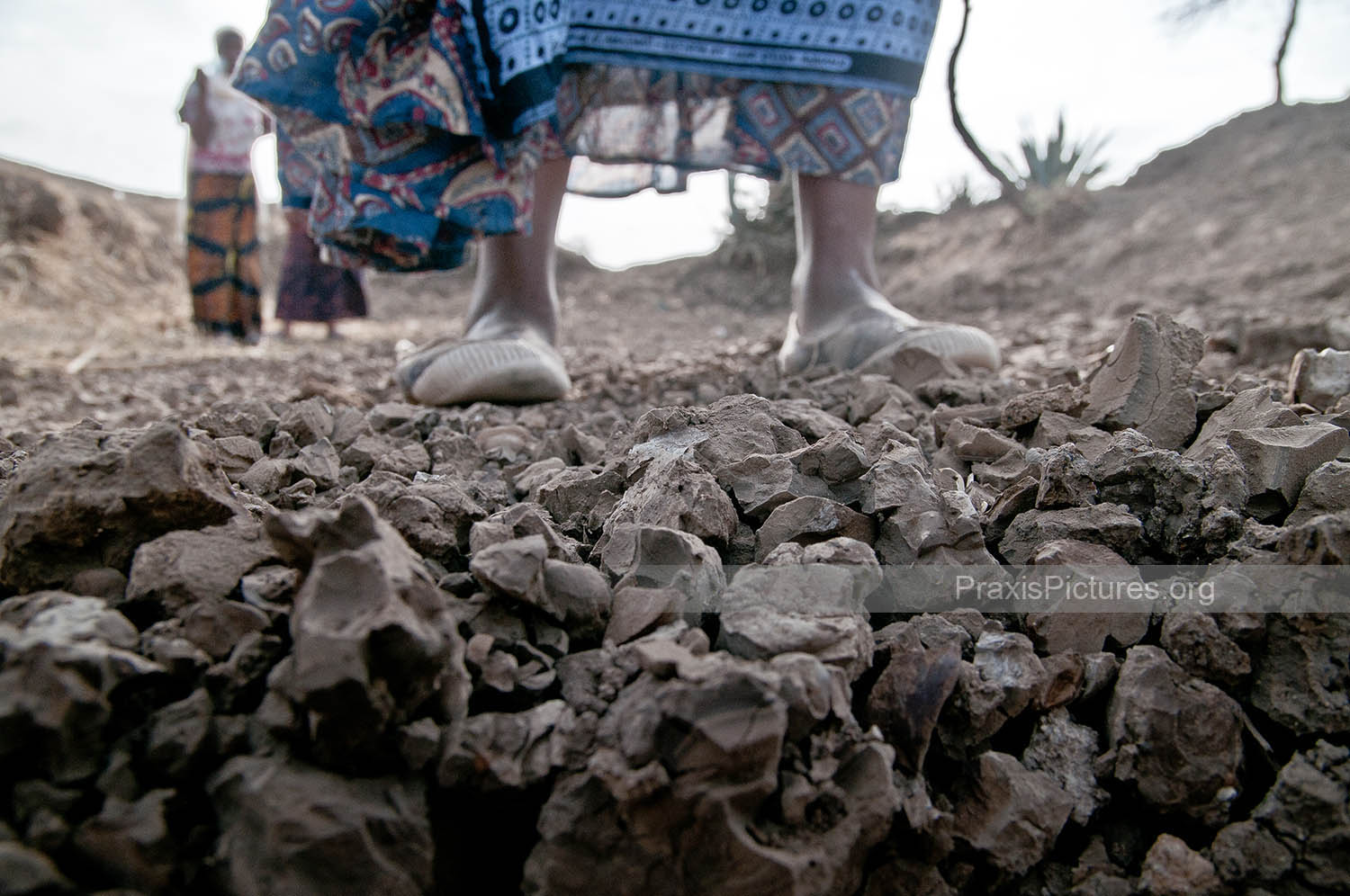 """NGORBOB: OUR LAND IS DYING AND SO ARE WE  (Photoessay)     """"The climate has changed. There is no water here, nothing. Our land is dying and so are we""""  Ngorbob elders.     Ngorbob is a small Masai village near Arusha, Tanzania. They have not seen rain for over a year, and as a result their farmlands and livestock are dying. Many of the residents of Ngorbob have already been forced to leave their ancestral home in search of water and work...(more)"""