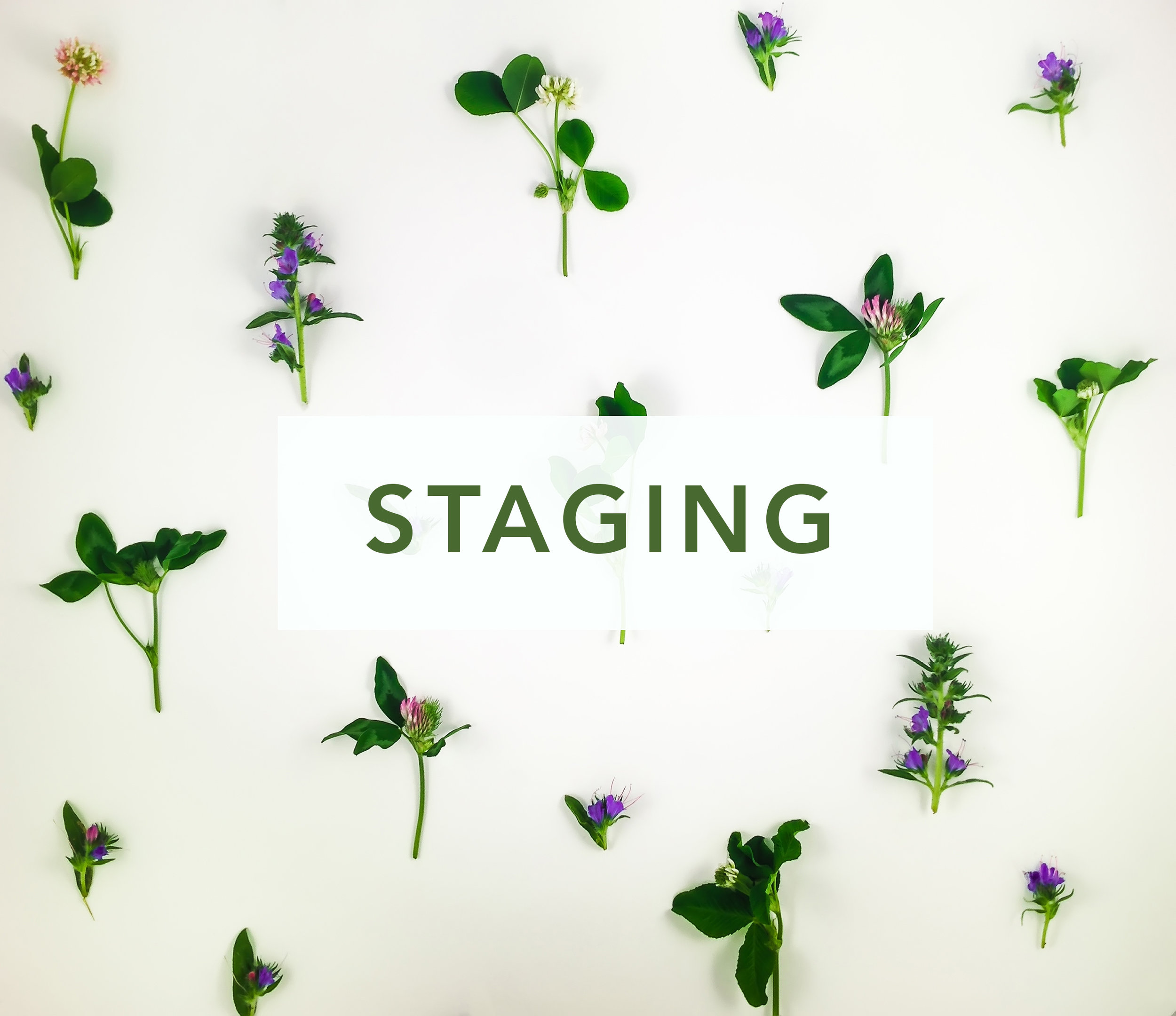 The most value-packed staging service you will find. period. -