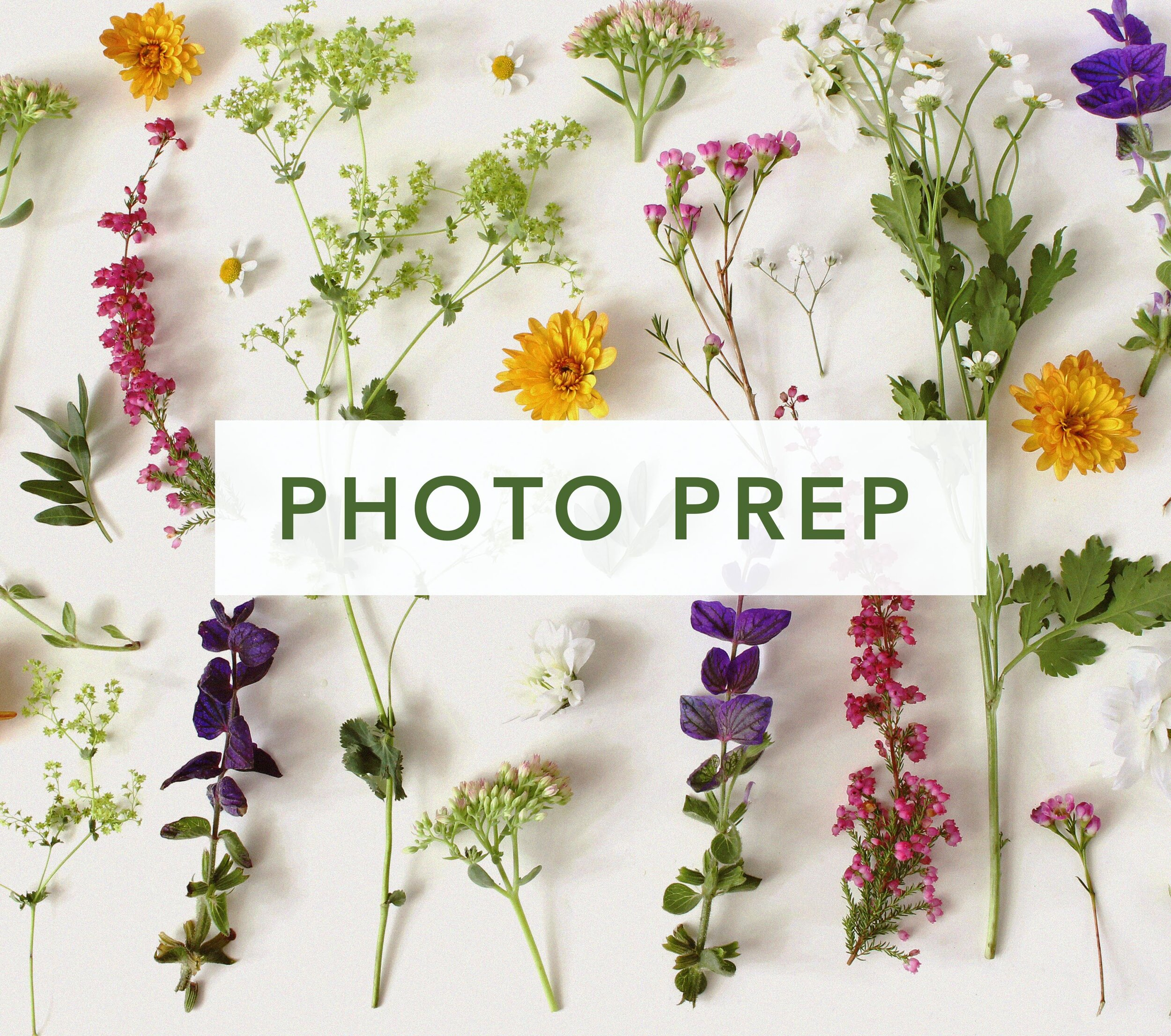 photo_prep_service_card_website.jpg