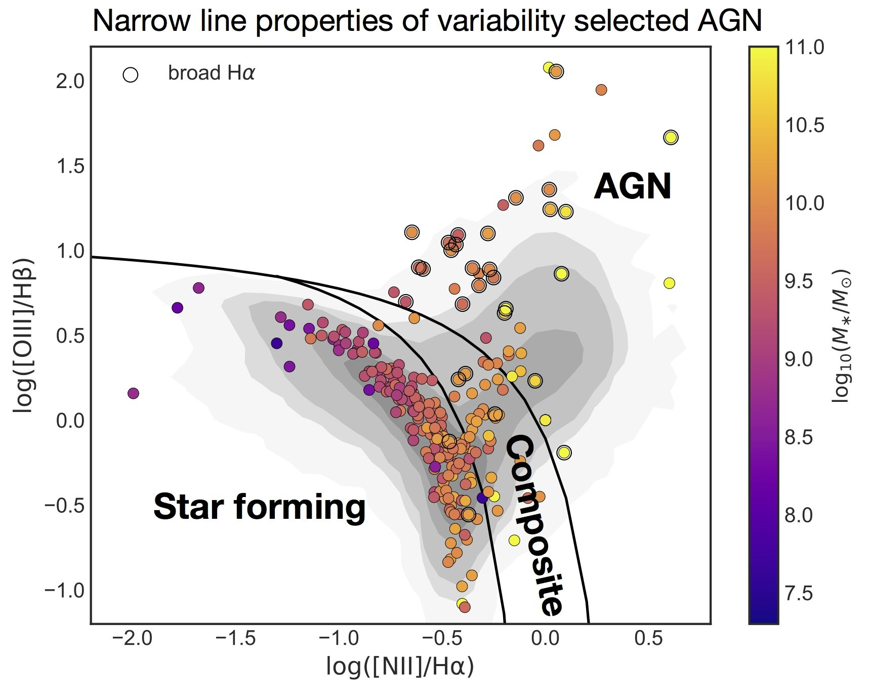 BPT diagram showing the positions of variability-selected AGNs. Points are colored by stellar mass, and objects with broad H-alpha emission are circled. The lowest-mass objects in the sample have narrow emission line ratios dominated by star formation.