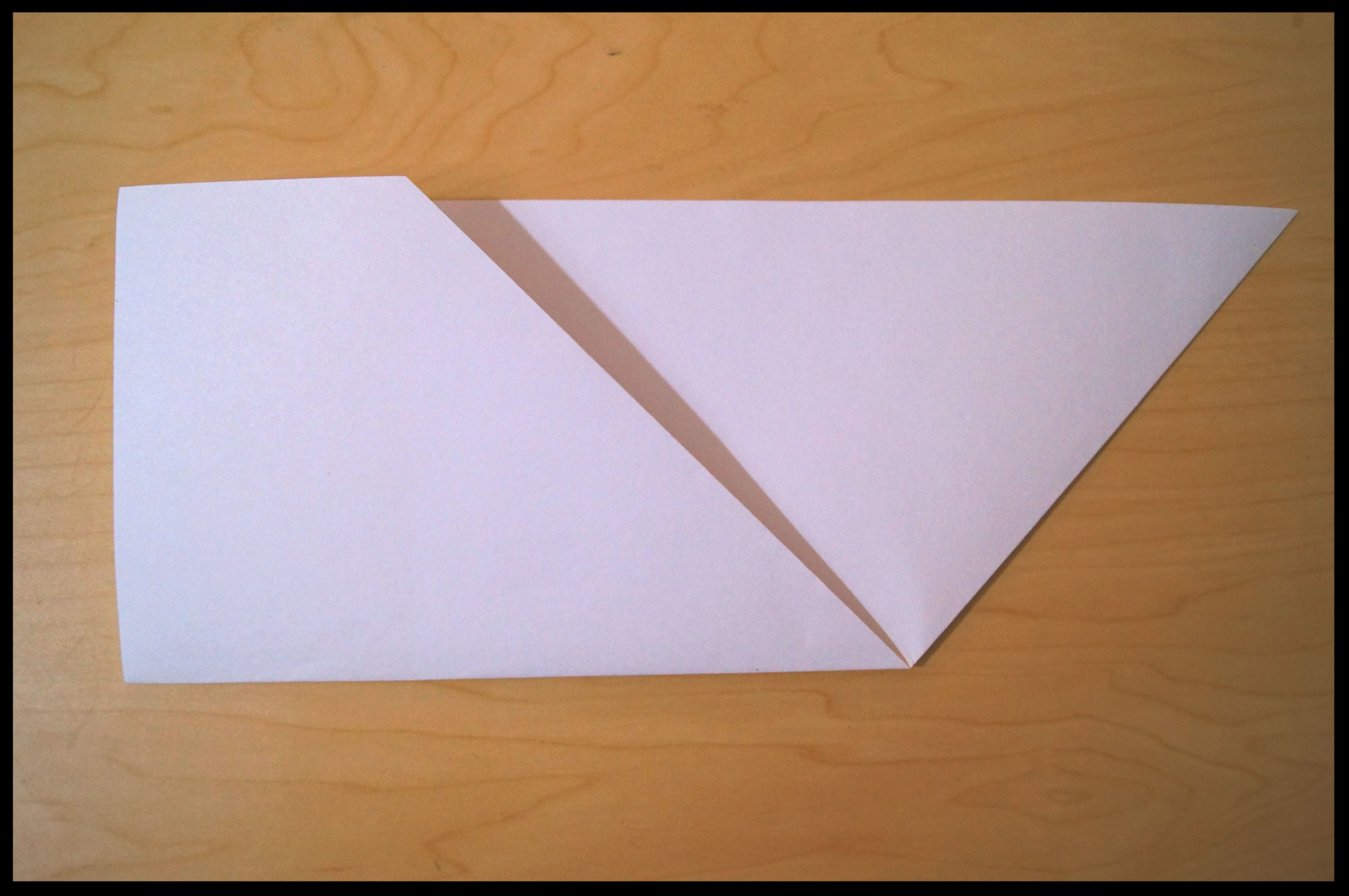 3. Fold the paper in half horizontally by bringing the bottom edge up to the top edge. Turn over.