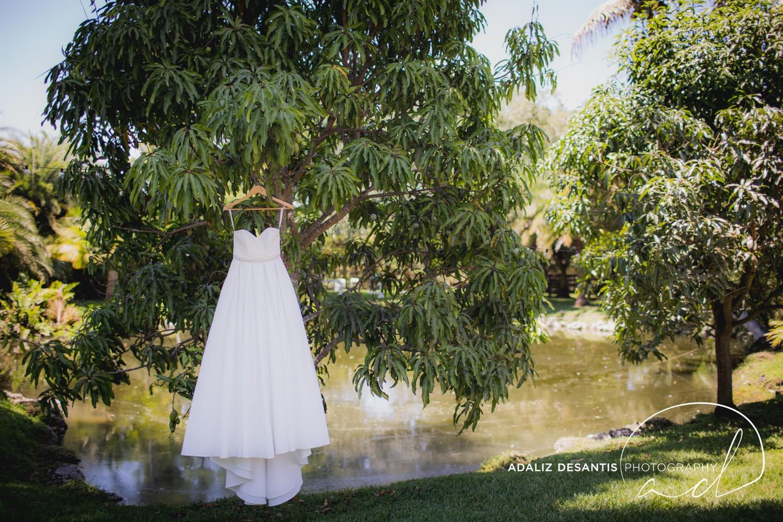Southwest Ranches Le Chateau Davie FL Fort Lauderdale Garden Wedding 1.jpg