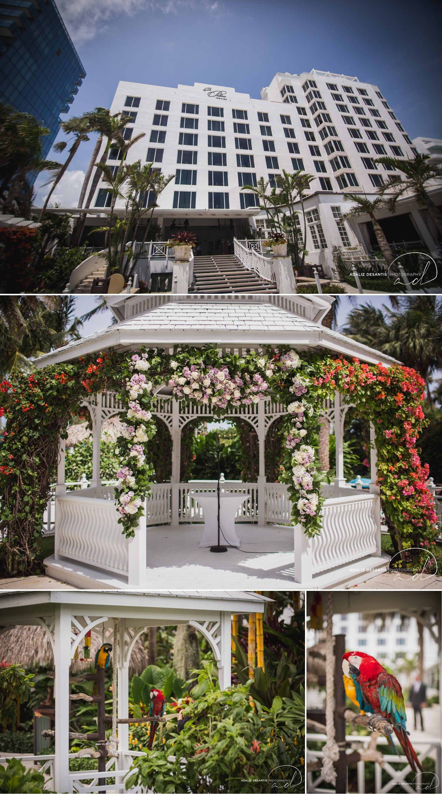 Carmen Alex palms hotel spa miami beach destination wedding lavender roses cuban cigar England cuba bride rose gold elegant Maggie Sottero Badgley Mischka 1.jpg