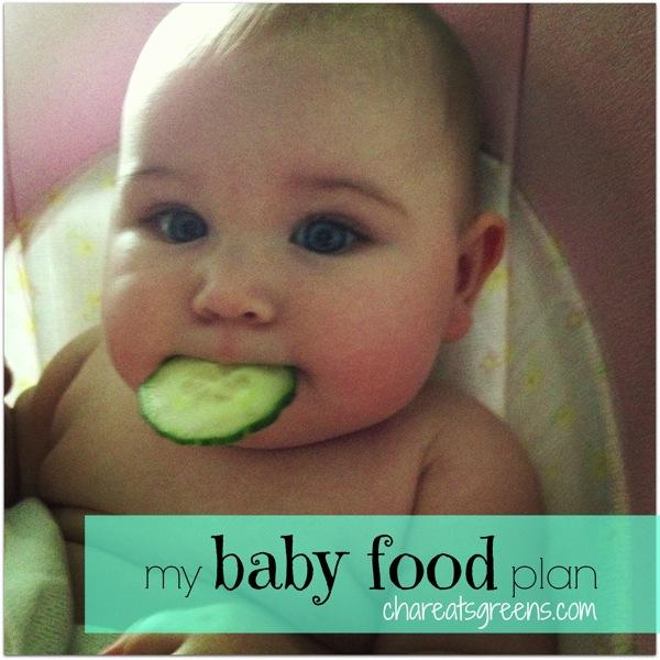 my-baby-food-plan.jpg
