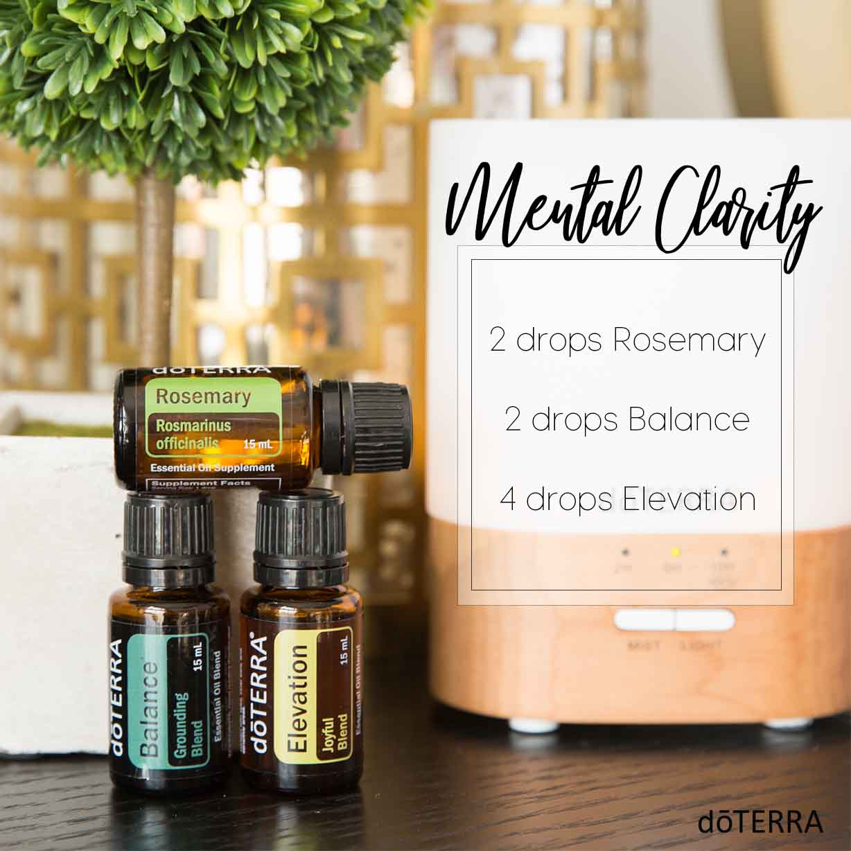 may-2018-diffuser-mental-clarity.jpg