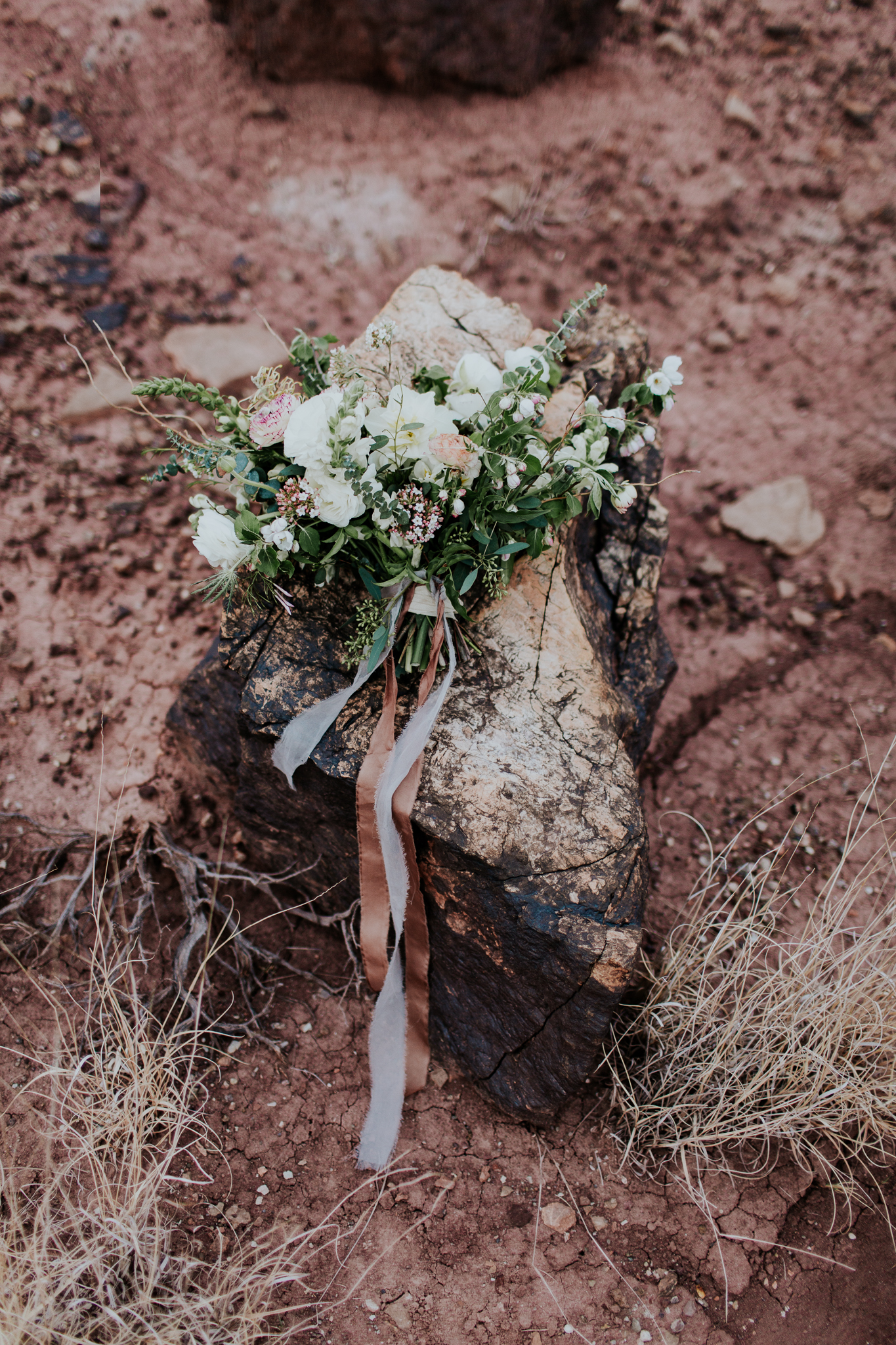 emily-hary-photography-new-mexico-elopement (143).jpg