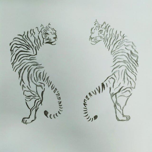 dream tigers
