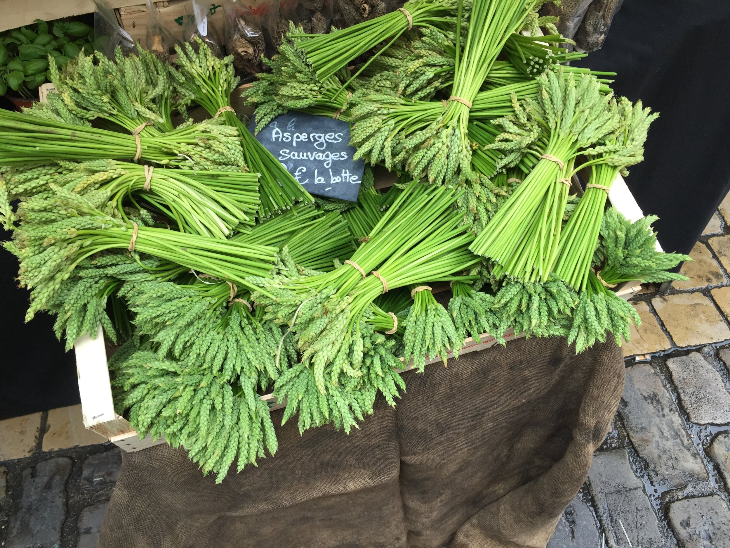 Wild Asparagus at the market in  Beaune, France