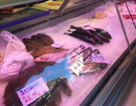 Nice Dover sole and other fishes fresh from the market in  Dinant, Belgium