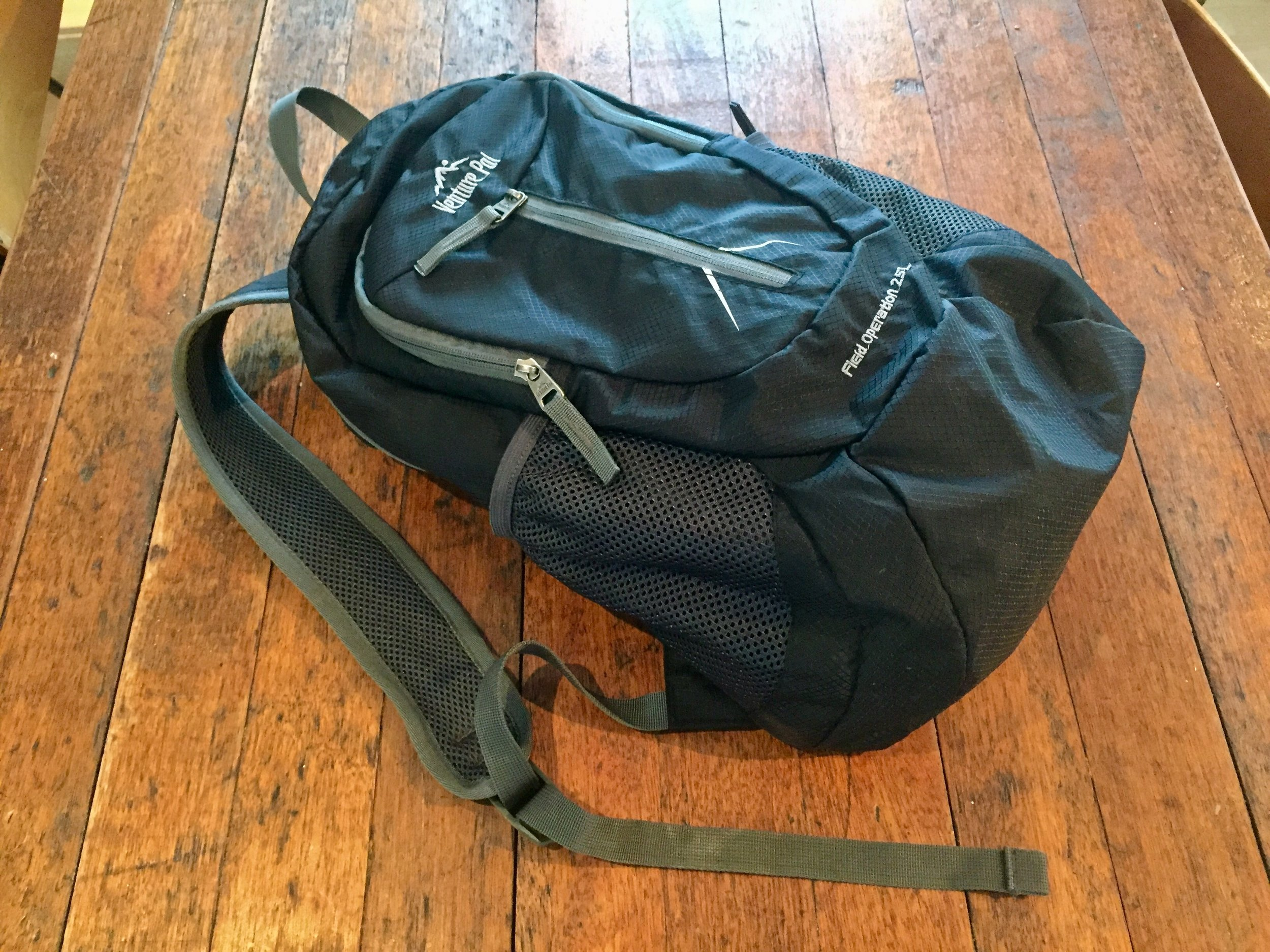 Venture pal lightweight backpack