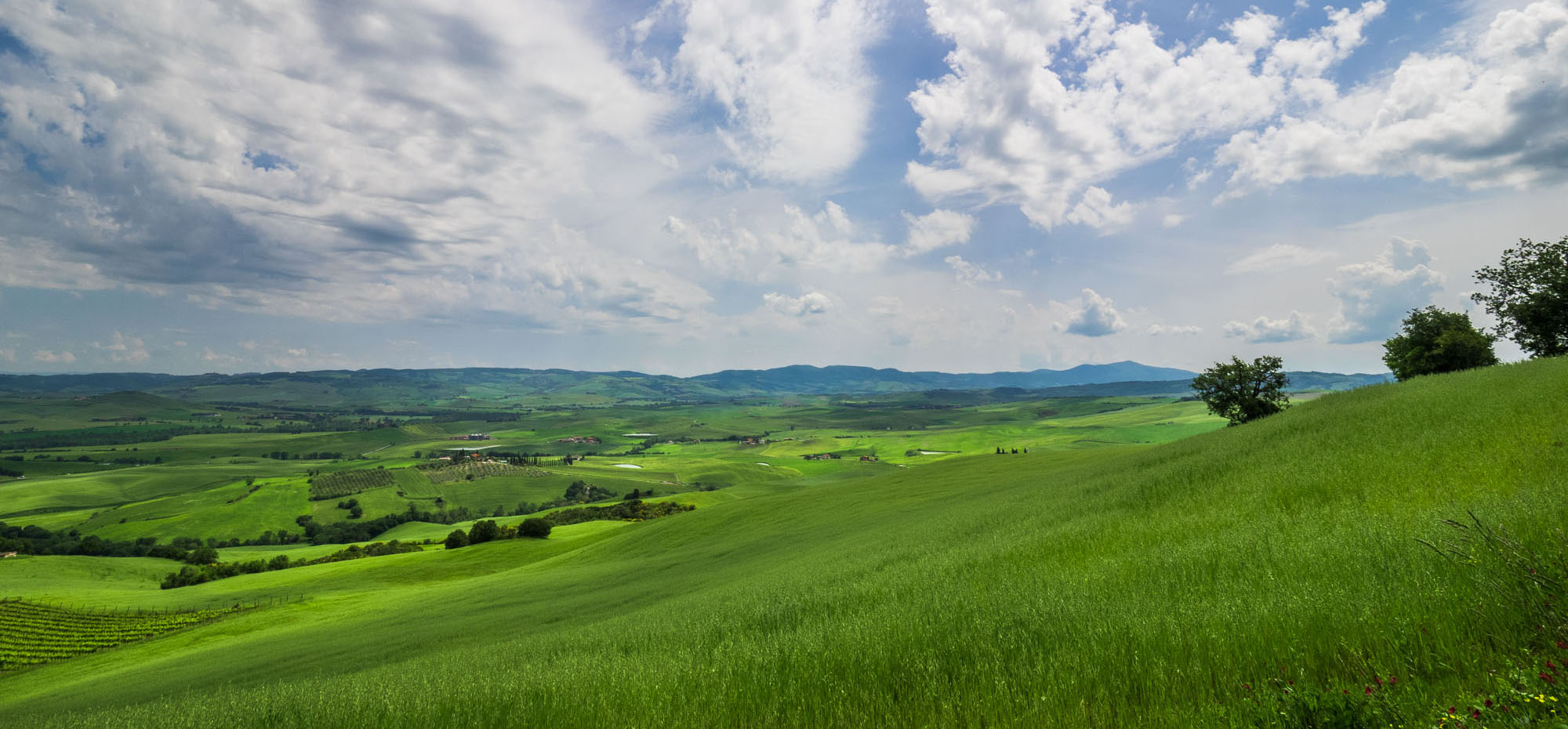 The hills of Tuscany during a May small group tour (Photo by  Susan Bahen )