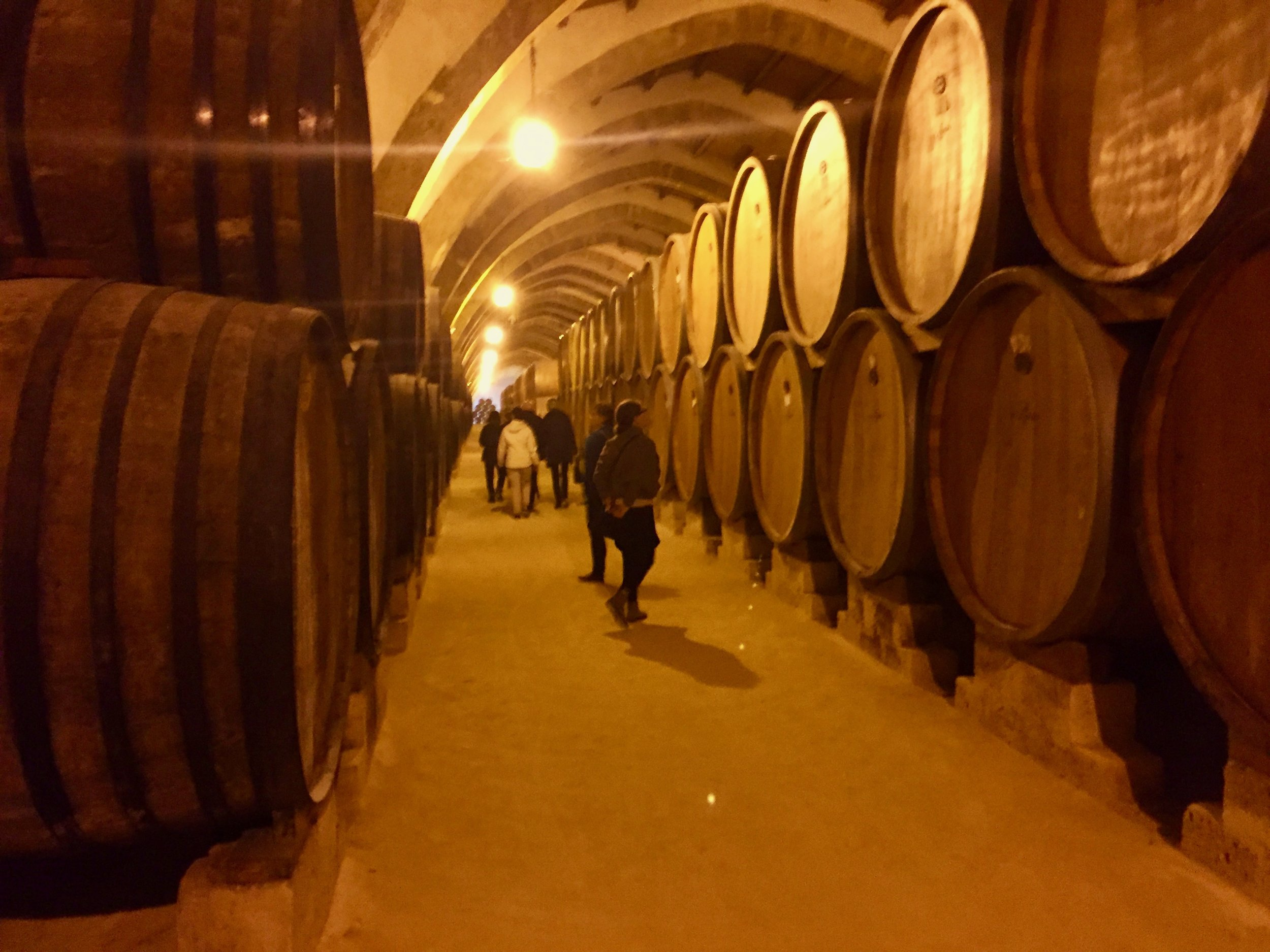 Florio's huge Marsala barrel room
