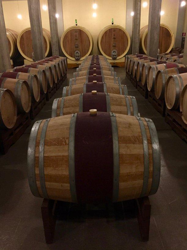 The barrel room at Brunello producer, Altesino