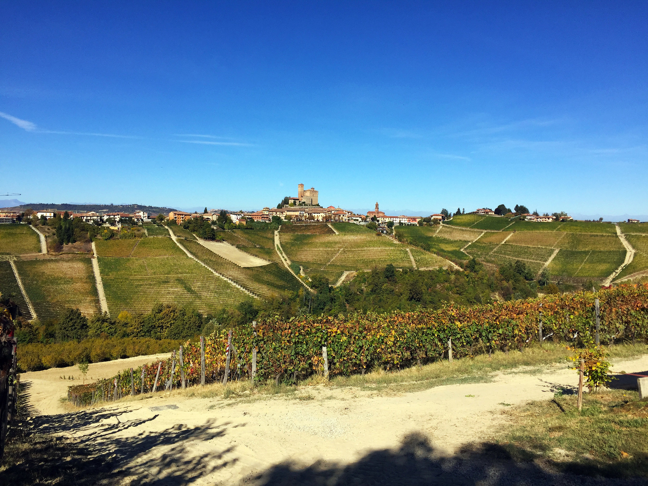 The vineyards of Barolo during our small group tour of Piedmont, Italy