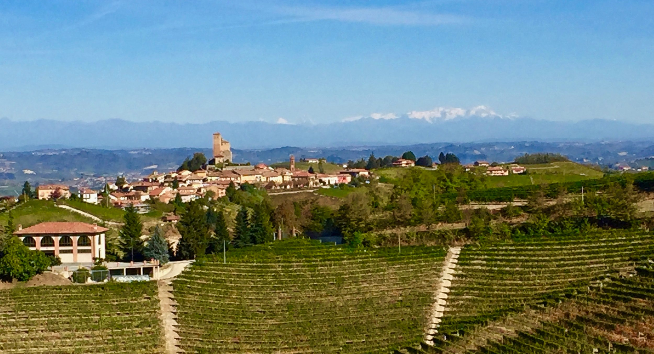 Serralunga d'Alba with the Alps in the background