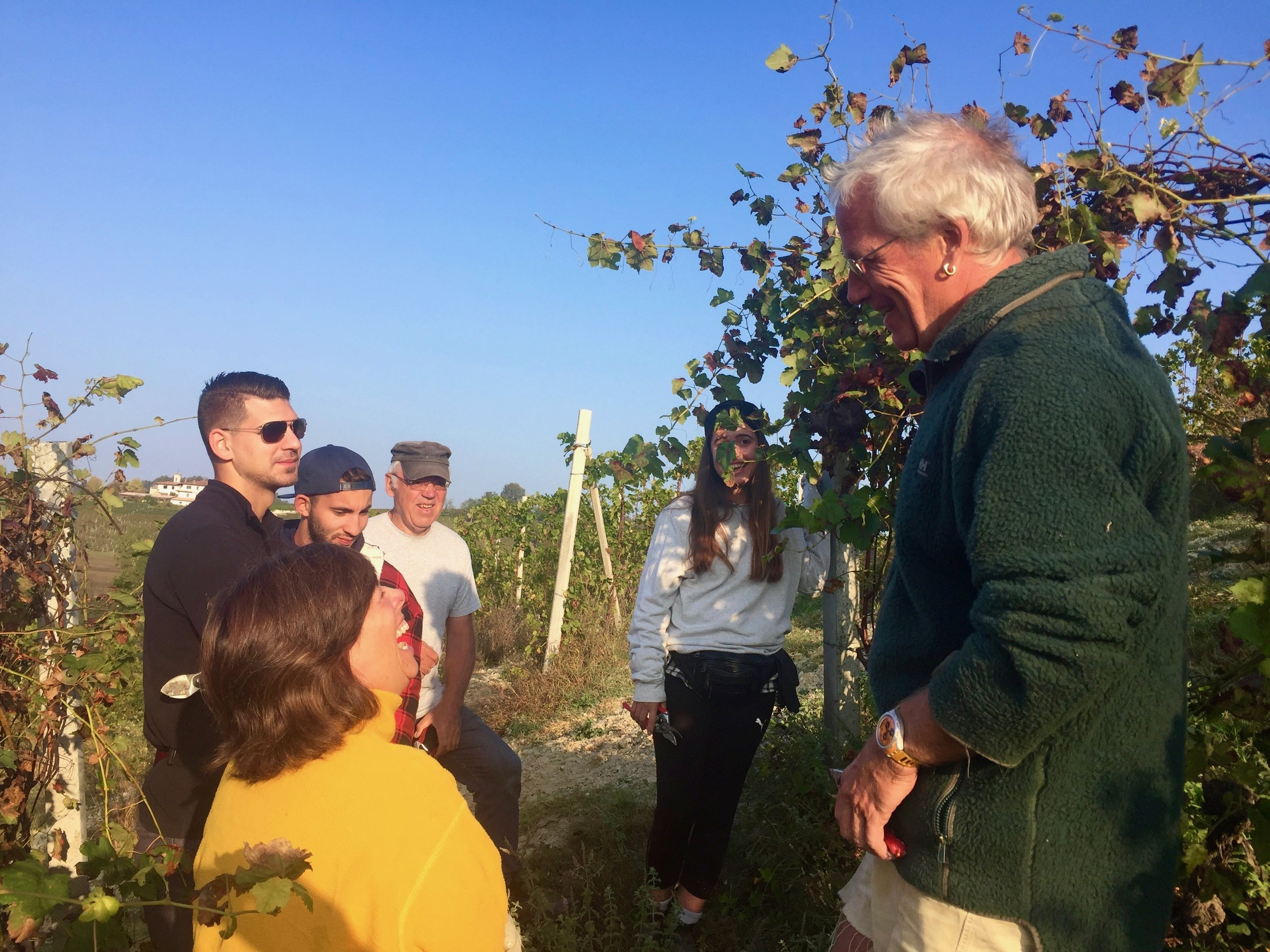 Marcello teaching us how to prune vines in Piedmont