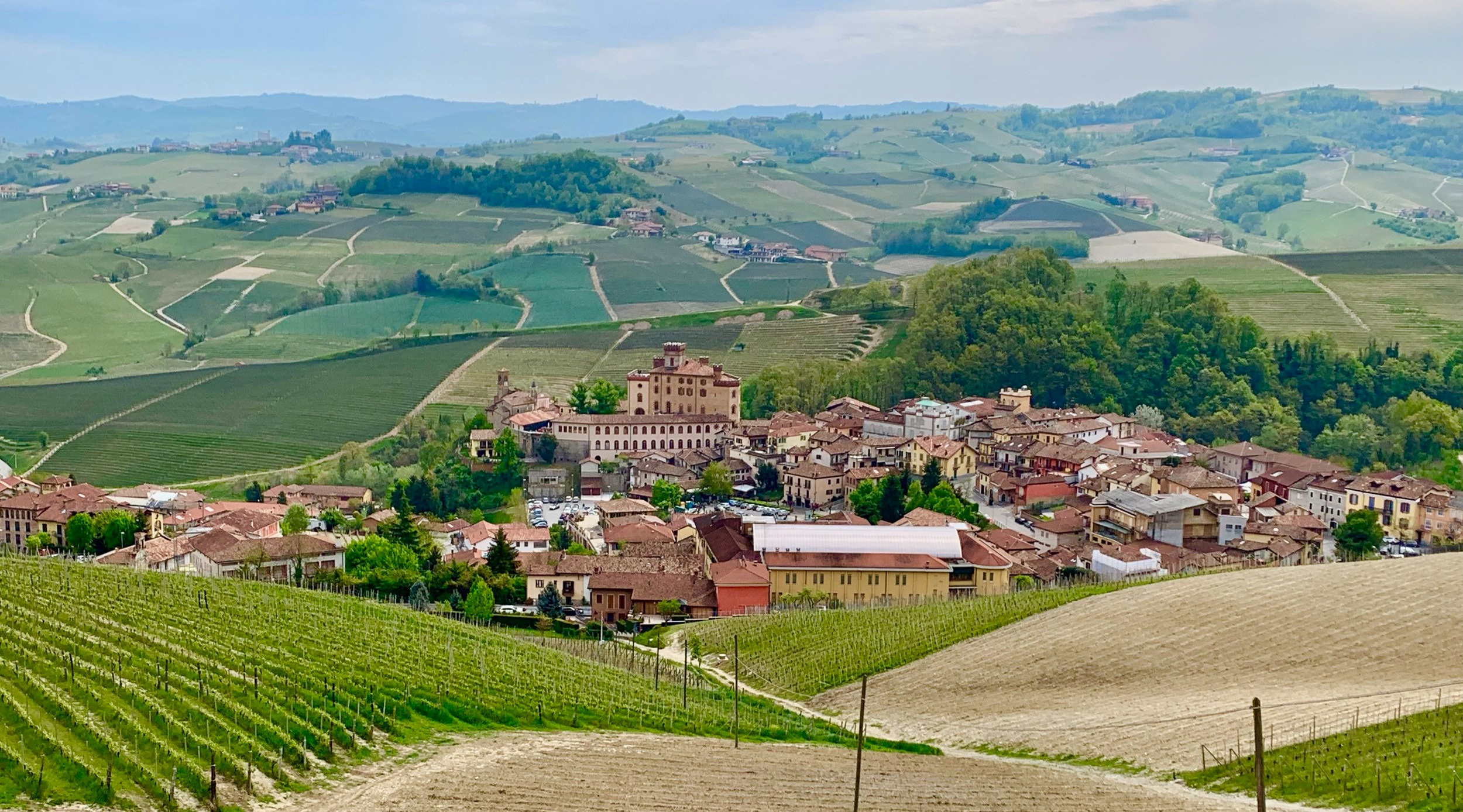 The village of Barolo with some of the famous Cannubi Cru vineyards