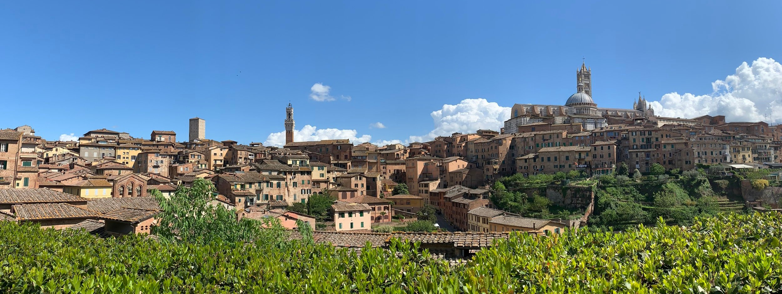 Siena, Italy is a beautiful spot for Italian classes