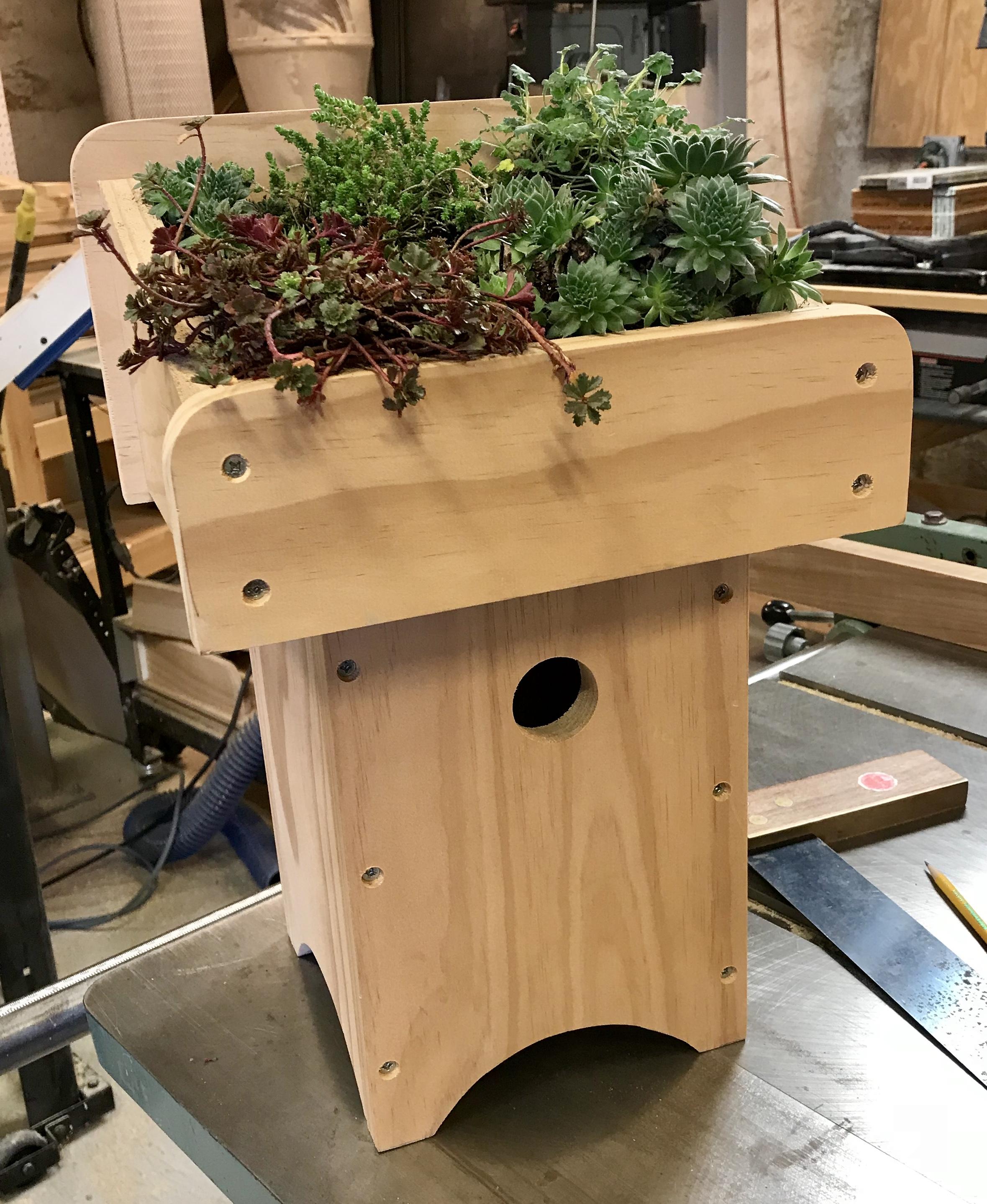 Frank Perrone Design Green Roof Birdhouse