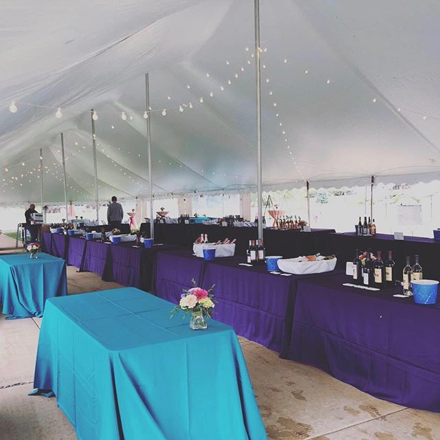 Our setup from The Garden Party Northern Mi this year! This color duo     @tgpmichigan