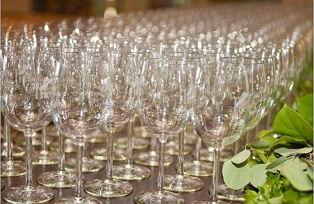 A look at the wine glasses from @tgpmichigan. We are already excited for next years event 🍷🍷