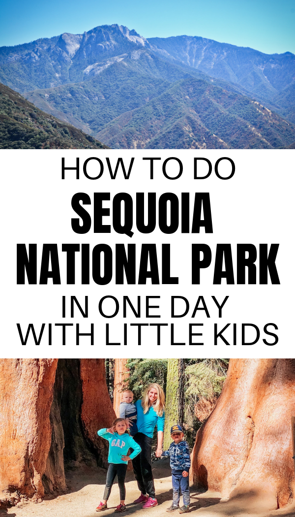Things to do on a trip to Sequoia National Park with kids and toddlers..png