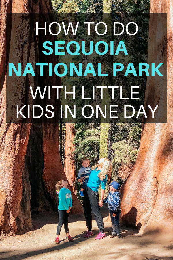 HOW TO DO SEQUOIA NATIONAL PARK WITH LITTLE KIDS IN ONE DAY.png