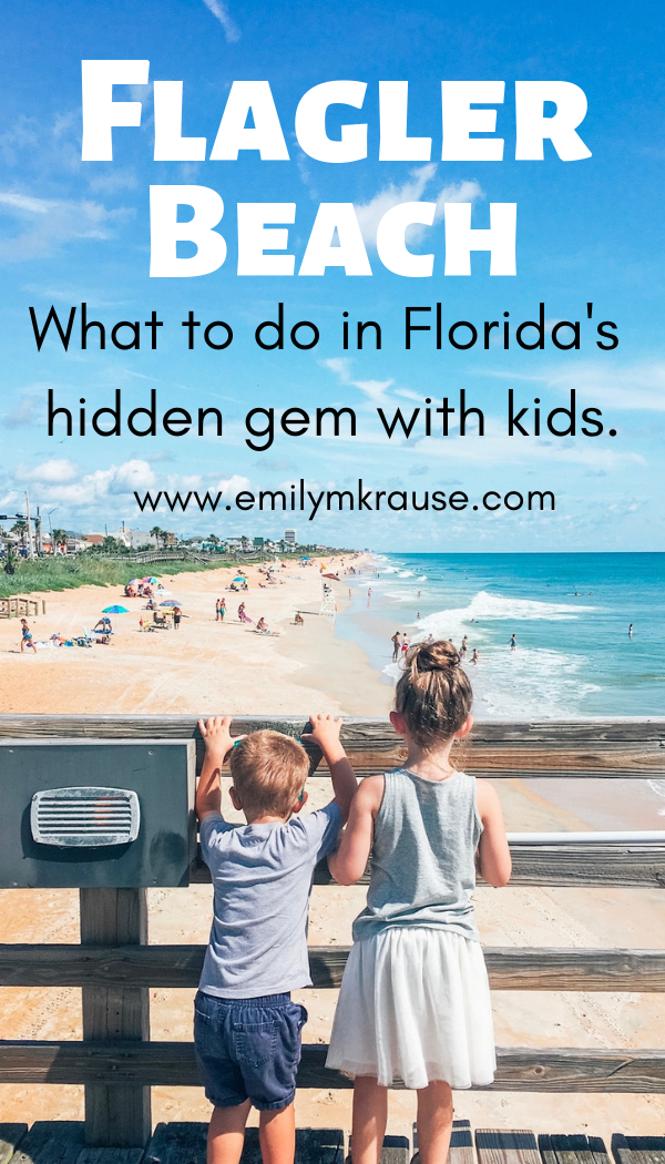 Things to do in Flagler Beach, Florida with kids. A short day trip from St. Augustine and Daytona Beach..png