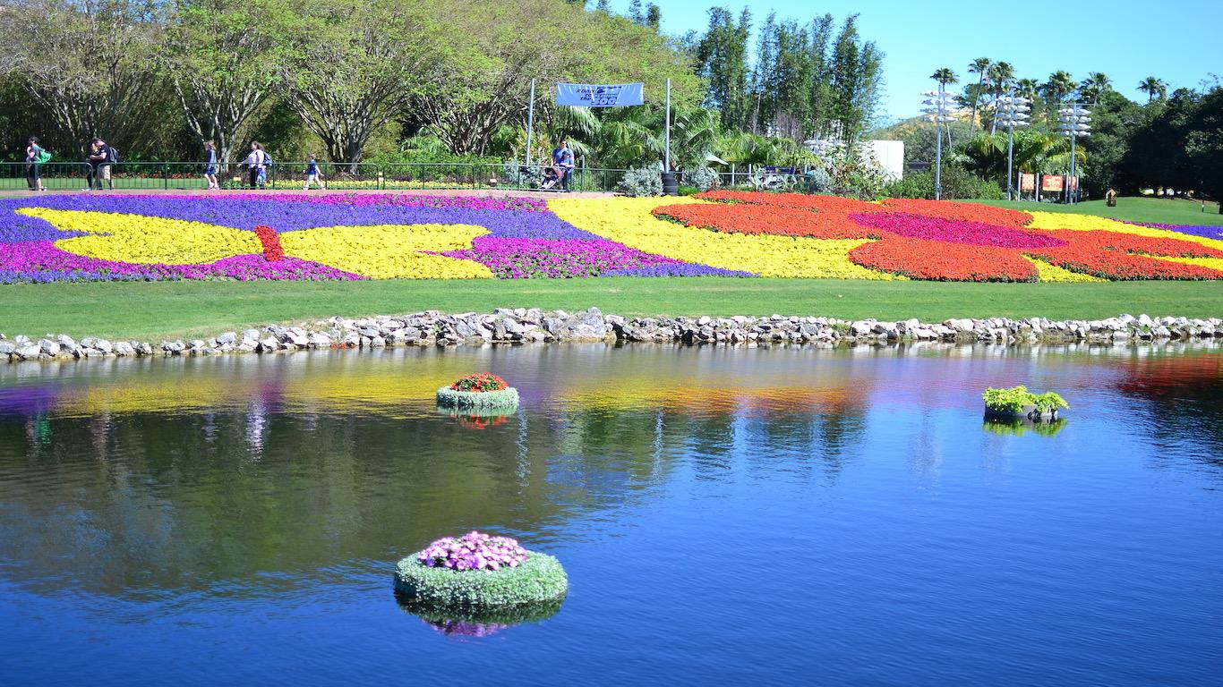 flower displays.jpg