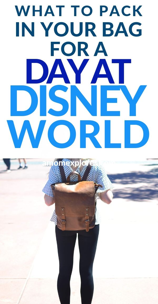 Tips for packing your day bag for Disney. If you want your long day at the theme park to run smoothly, consider these packing tips for everything you need to bring. Lots of tips for parents with babies and toddlers a.jpg