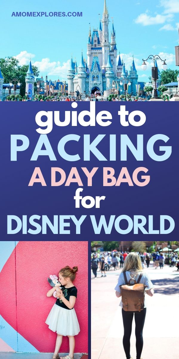 What to bring in a day pack for Disney. Survive long days in a theme park with little kids with this packing list for Disney with a toddler. Everything you need to bring in your bag for a day at the parks!.jpg