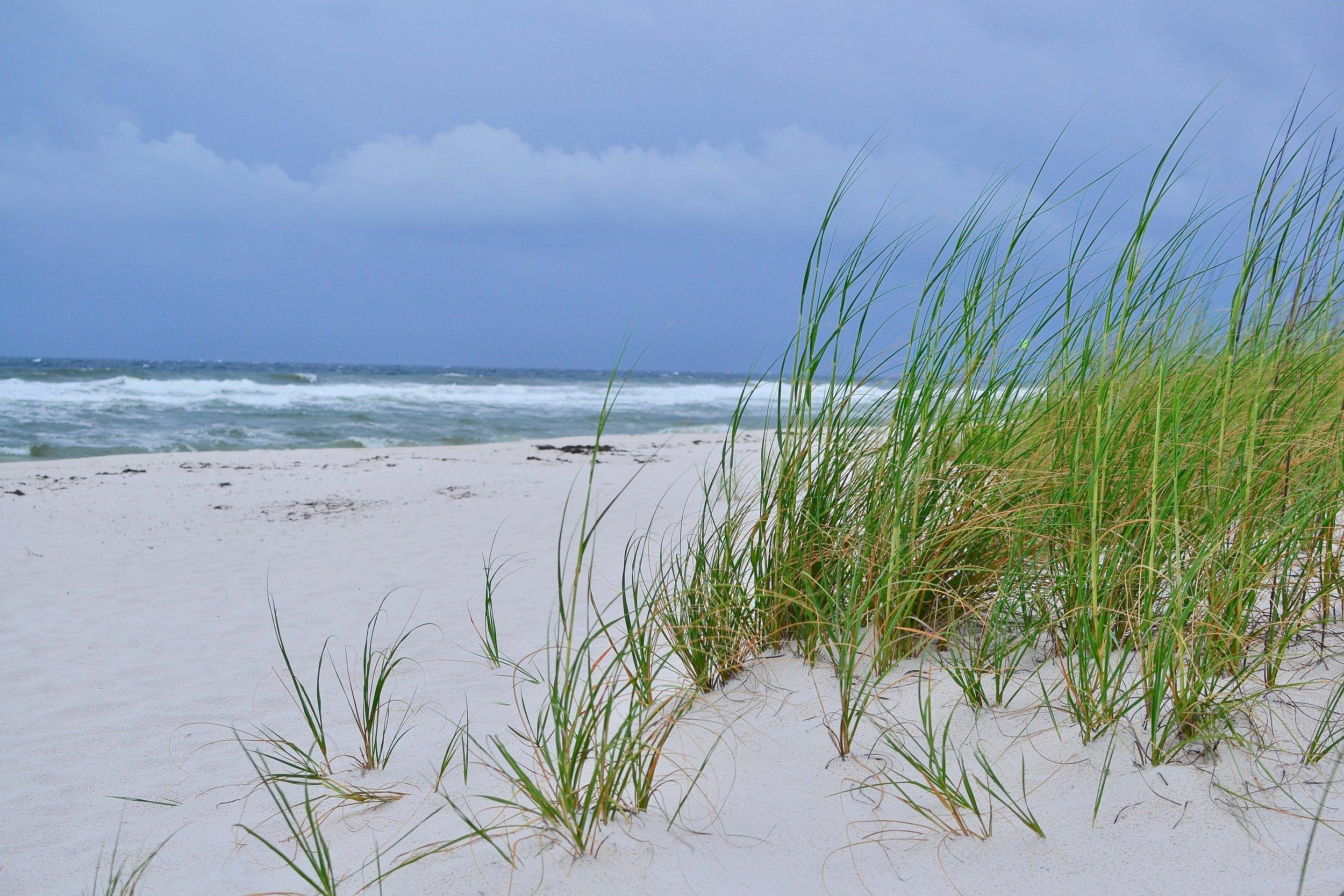 Gulf Islands National Seashore.jpeg