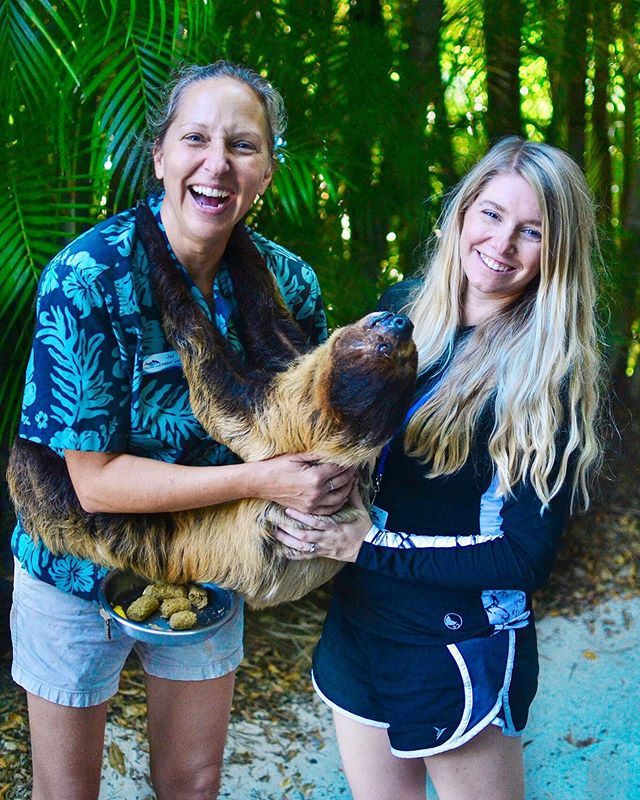 This is the story about a sloth named Lucky...🎶Early Morning, he wakes up... Just kidding. I won't type all the lyrics to that song. But this sloth really is named Lucky. And he's really cute. And our family got to hang out with him for like 10 whole minutes at Discovery Cove Orlando.  Was I more excited than the kids? I think it's safe to say I was. What's the best animal encounter you've had?  #hosted