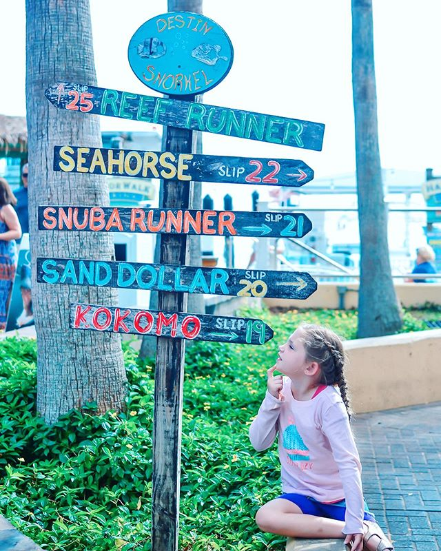 FREE OR CHEAP.  That's what we like to hear when we're planning our sightseeing activities for family travel. Admission prices can really add up quickly, especially with a larger family.  We loved HarborWalk Village in Destin because it was free to park and walk around, with options to eat, participate in water sports, boat rides, etc, or go shopping. We spent a few lovely hours wandering along the water peeking into souvenir shops and enjoying Kona Ice for the kids while we waited for our dolphin cruise.  What's the best free or cheap activity you've done on your travels?  #thewanderingtourist #familytravelblogger #exploringfamilies #amomexplores #takethekids #travelwithtoddler #wheretogonext #roadtripwithkids #theeverymom #candidkids #momoffour #popsugarmoms #lifeasamama #tinybigadventure #emeraldcoast #travelmom #momoftoddlers