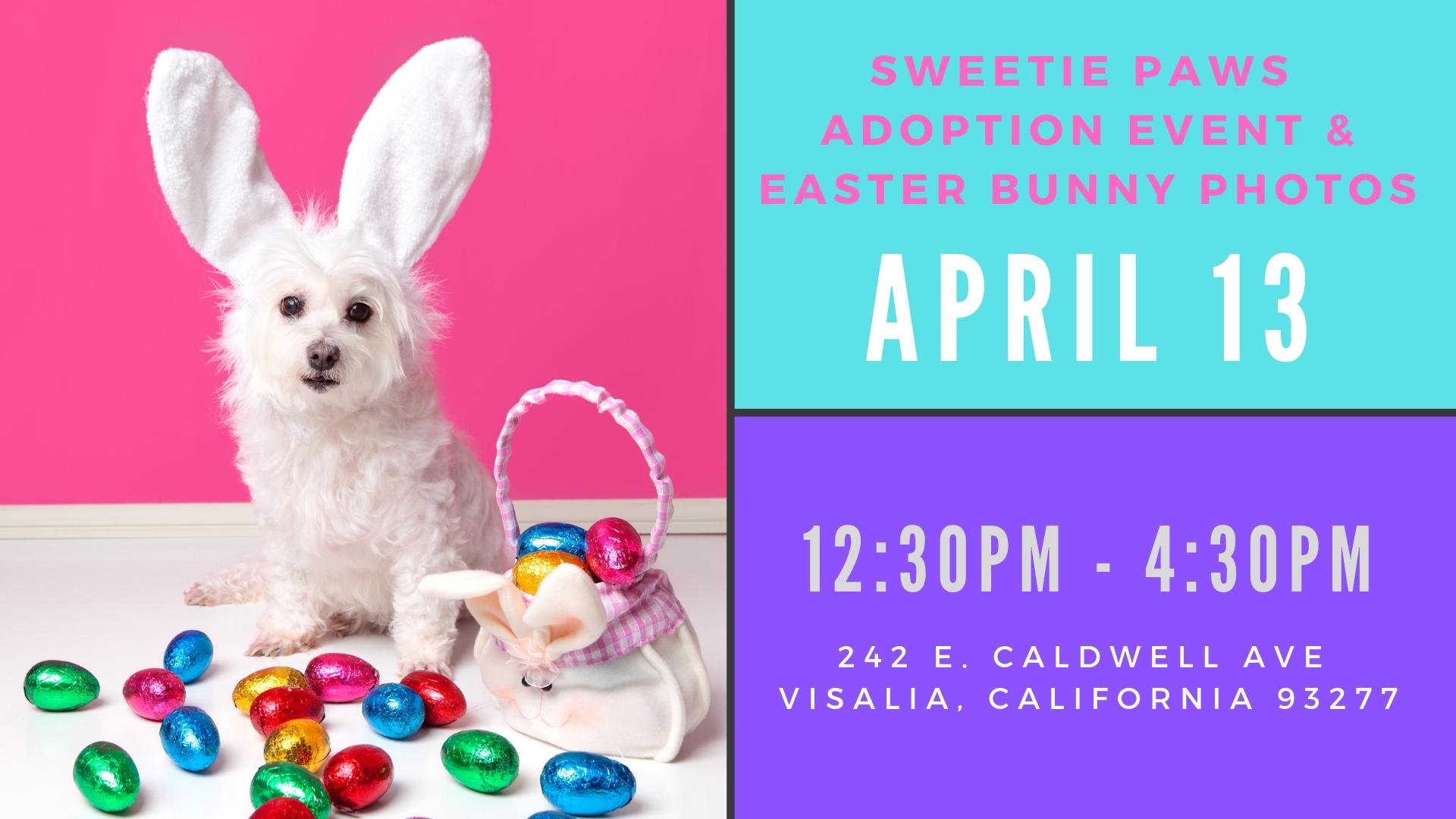 Sweetie Paws-Easter.jpg