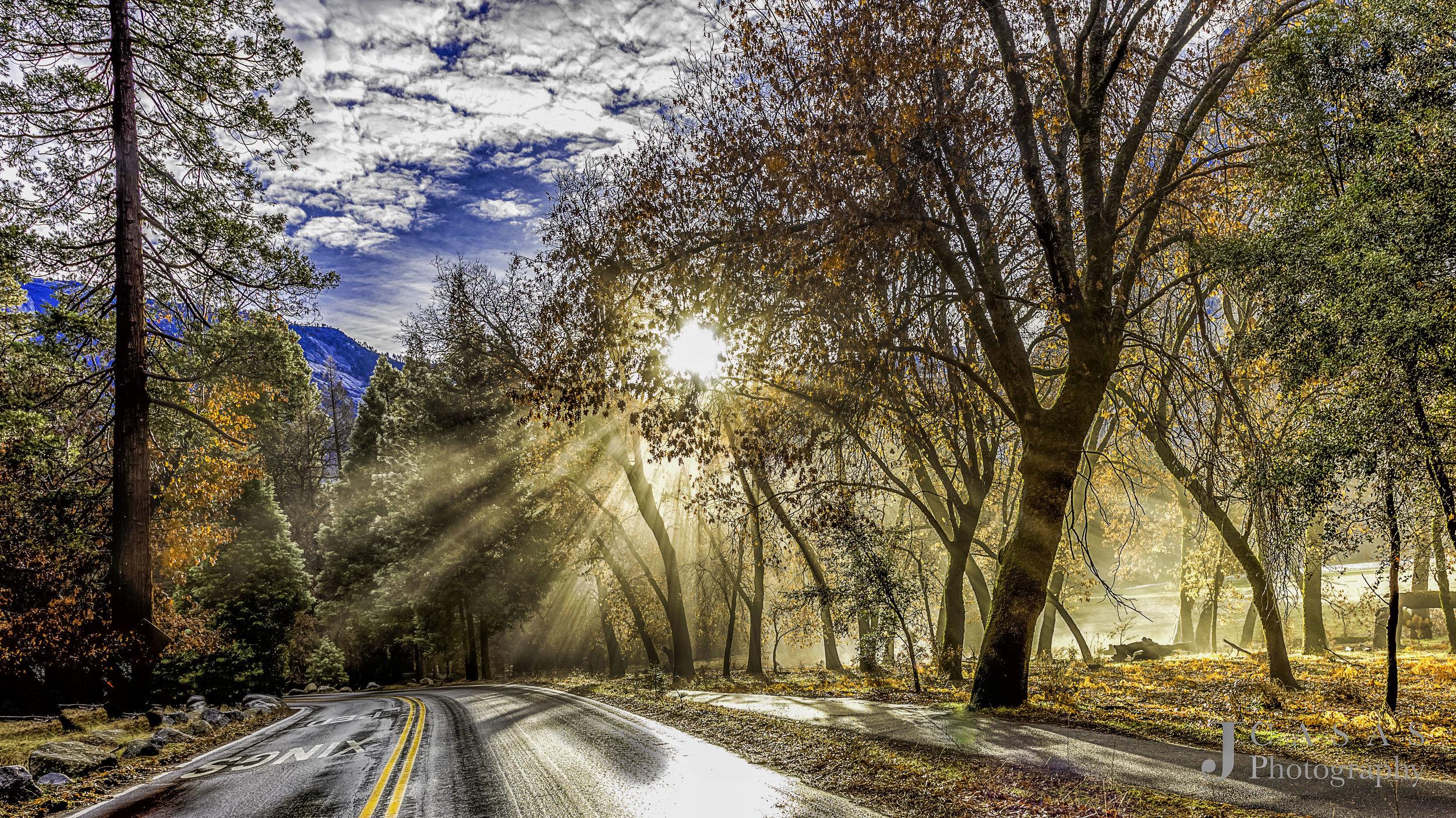 Morning Sun Rays In Yosemite