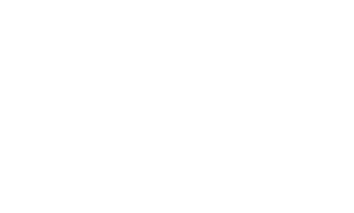 PDL Logo_White.png