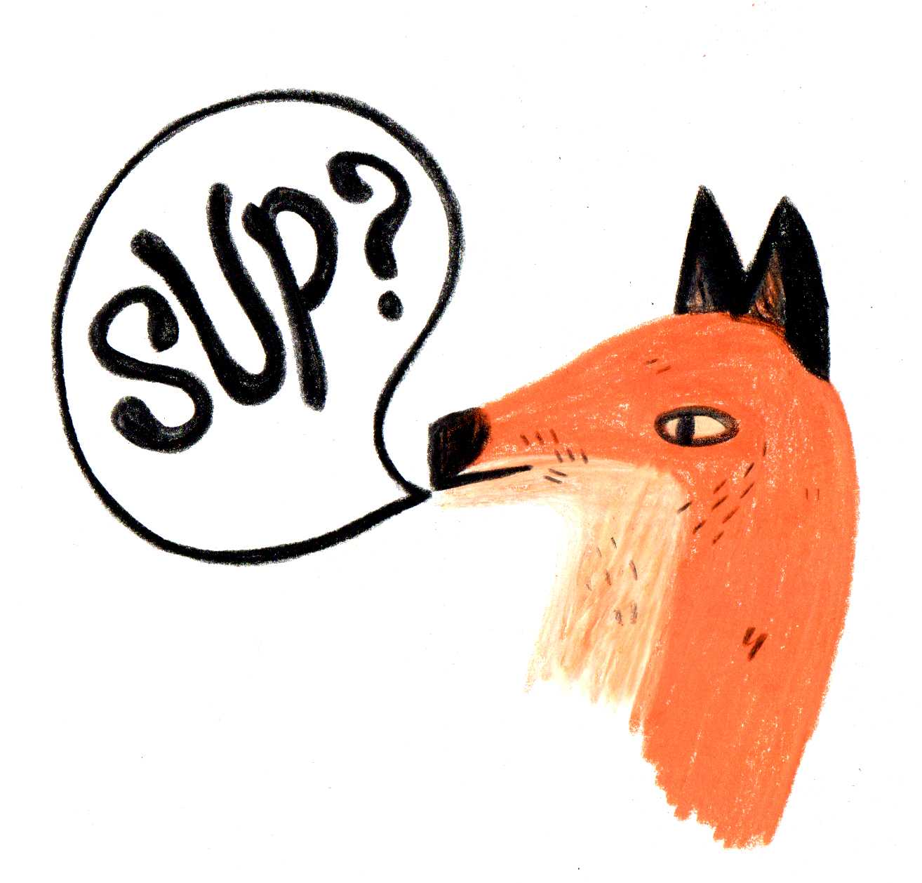 sup-fox.jpg