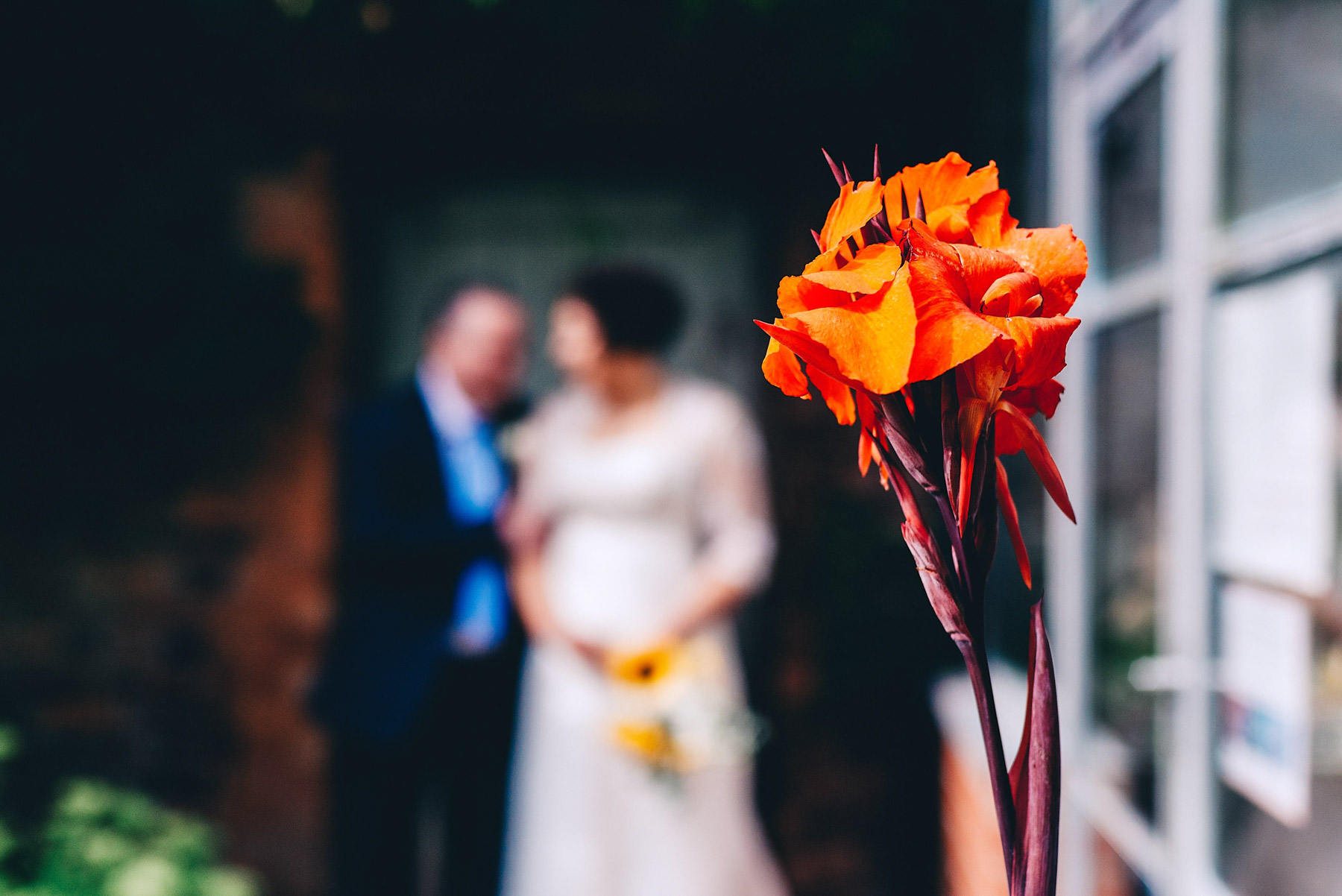 Close-up of flower with bride and groom in the background