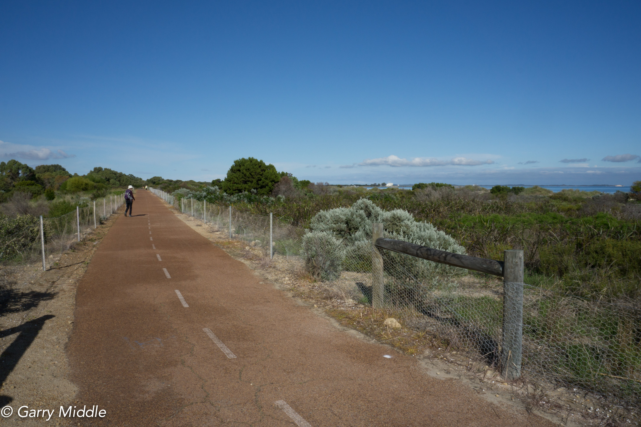 Plate 7: Path through low coastal scrub