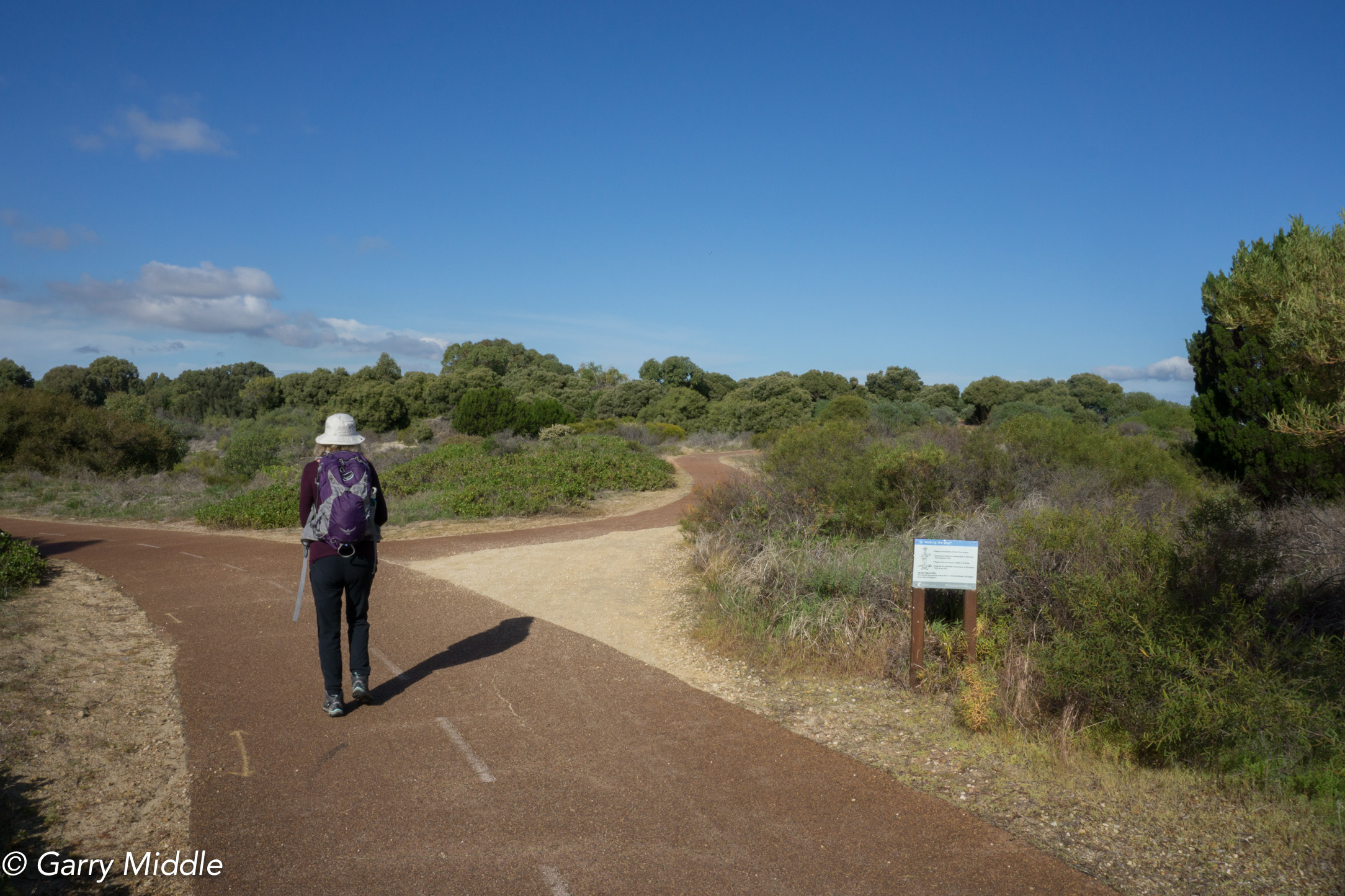 Plate 12: Narrow path between John Graham Reserve and the coast