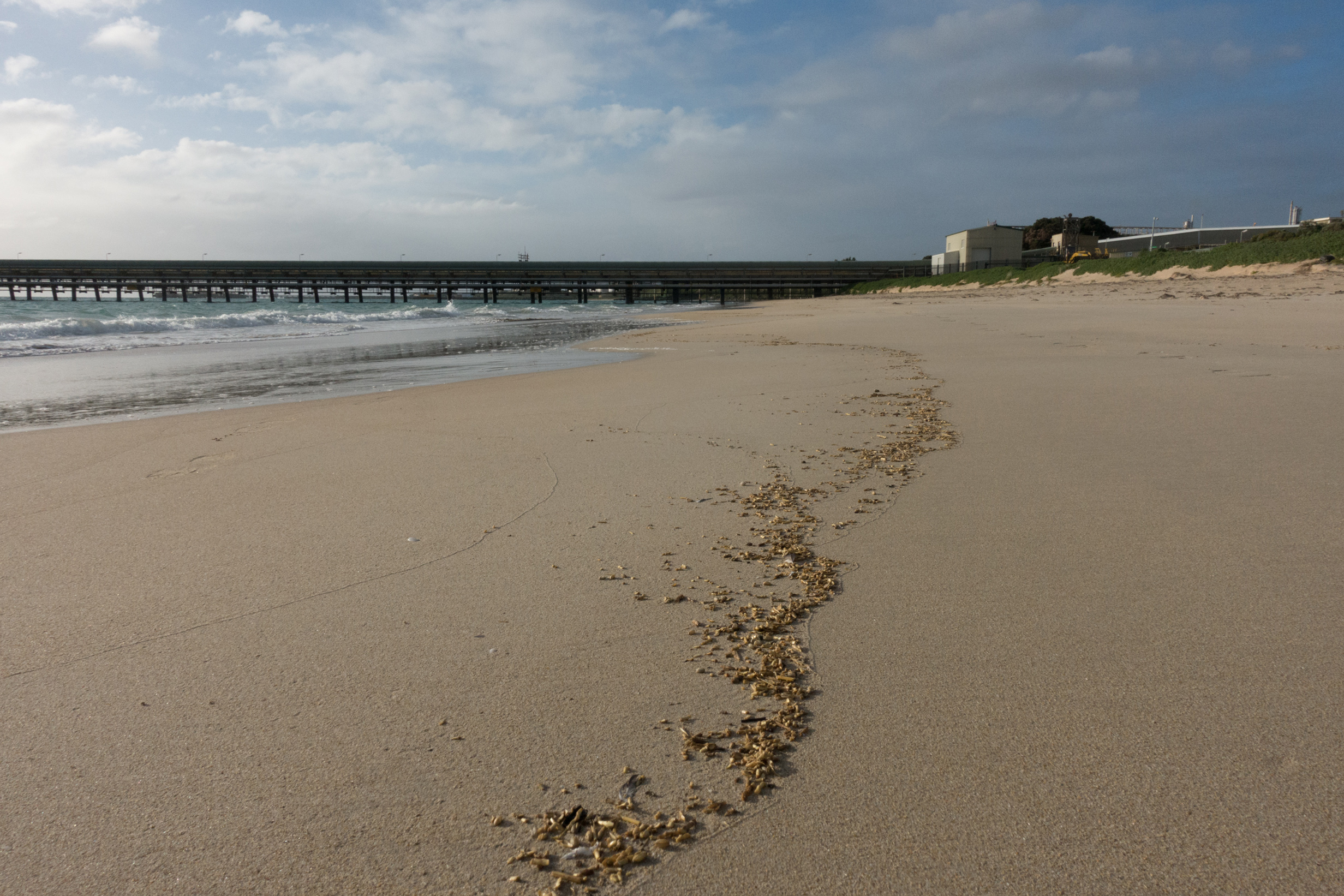 Plate 4: The beach north of Kwinana beach looking north with the impassable jetty in the distance