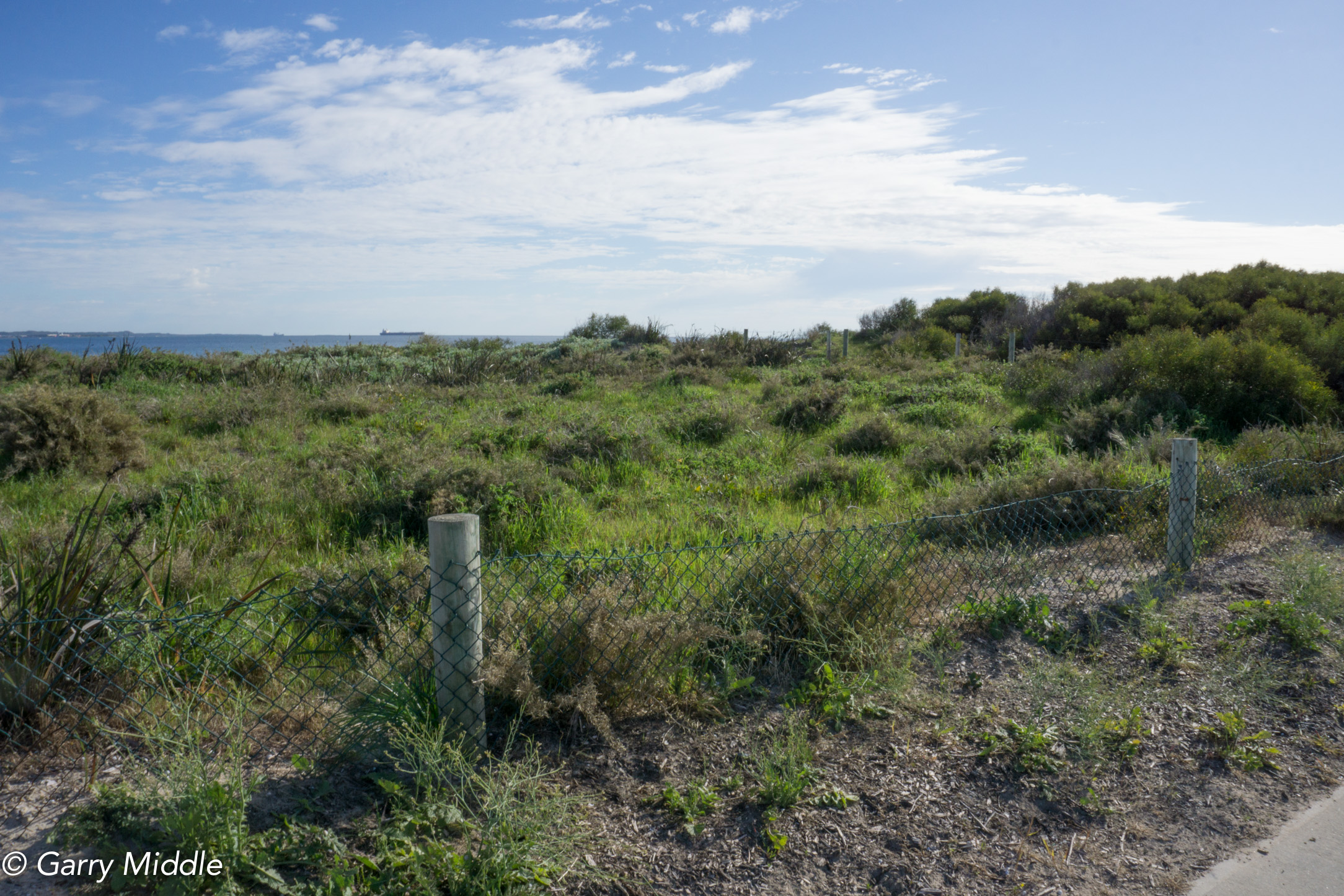 Plate 11: Ocean views from the path where the native vegetation is low enough.