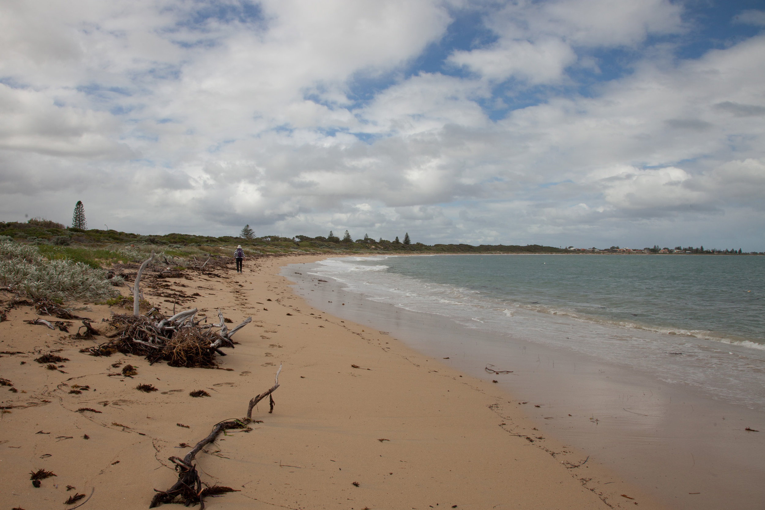 Plate 18: The last section of the beach walk to Shoalwater